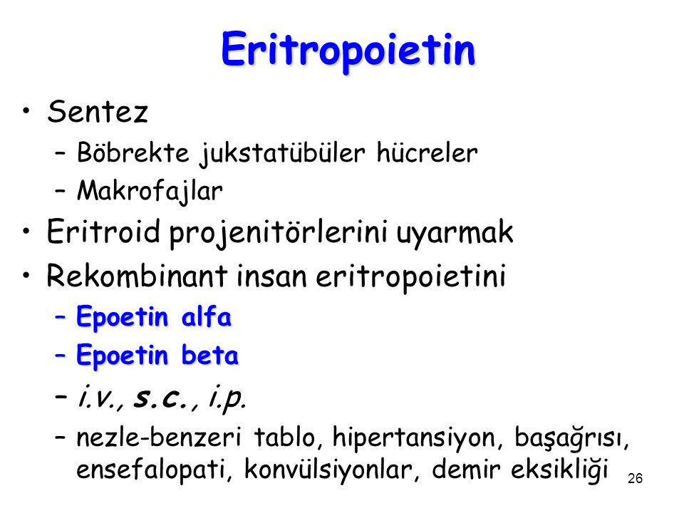 Eritropoietin Sentez Eritroid projenitörlerini uyarmak