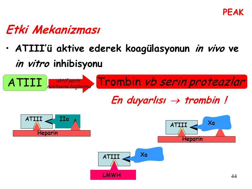 Trombin vb serin proteazlar