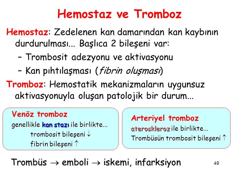 Hemostaz ve Tromboz Hemostaz: Zedelenen kan damarından kan kaybının durdurulması... Başlıca 2 bileşeni var: