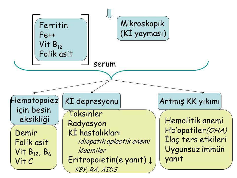 Eritropoietin(e yanıt) ↓ KBY, RA, AIDS Hemolitik anemi