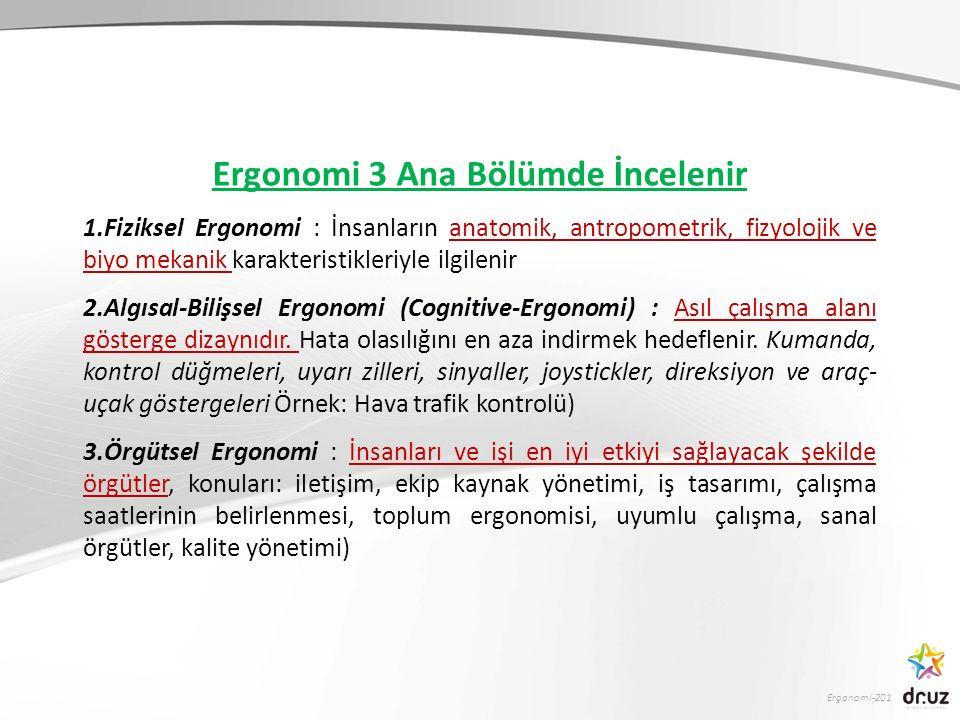 Ergonomi 3 Ana Bölümde İncelenir