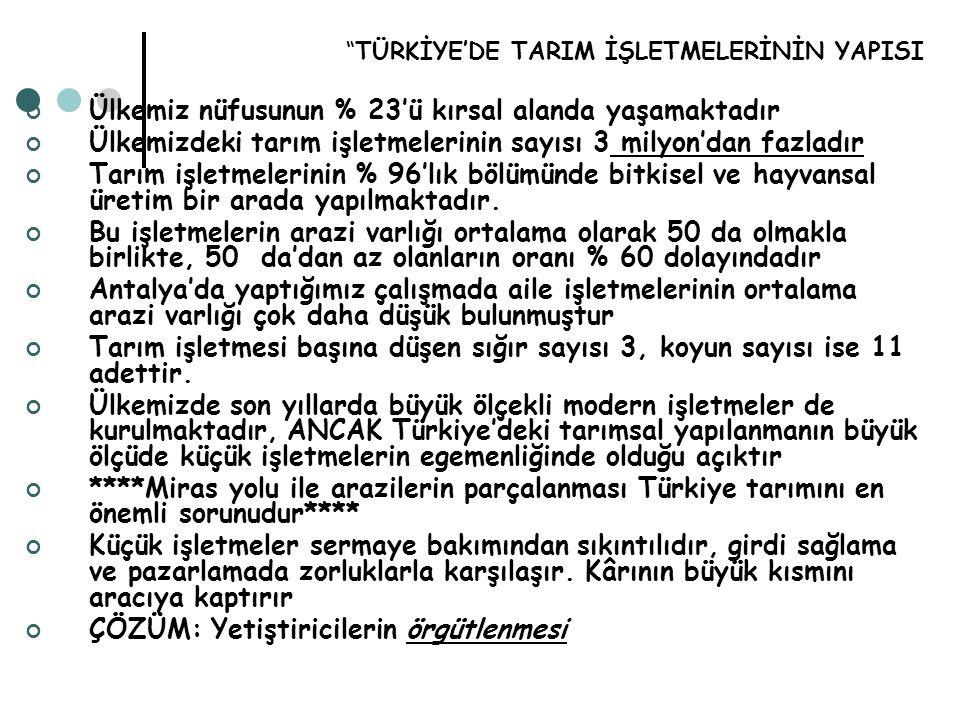 TÜRKİYE'DE TARIM İŞLETMELERİNİN YAPISI