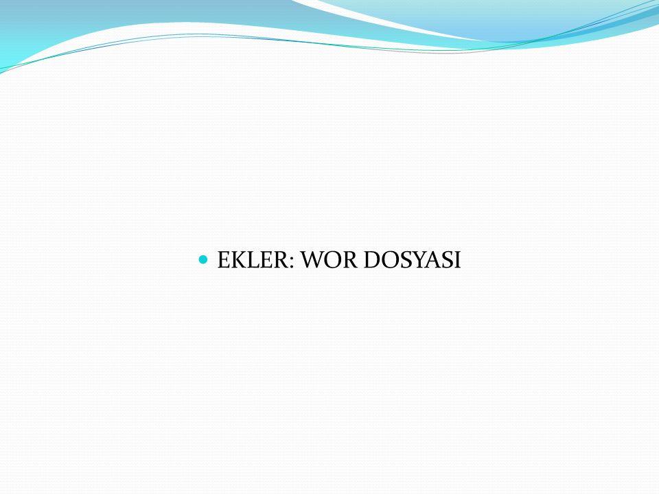 EKLER: WOR DOSYASI