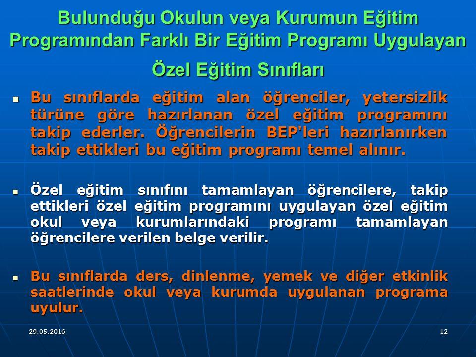 Bulunduğu Okulun veya Kurumun Eğitim Programından Farklı Bir Eğitim Programı Uygulayan Özel Eğitim Sınıfları