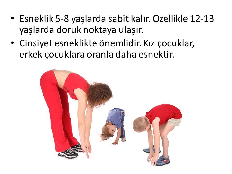 Esneklik 5-8 yaşlarda sabit kalır