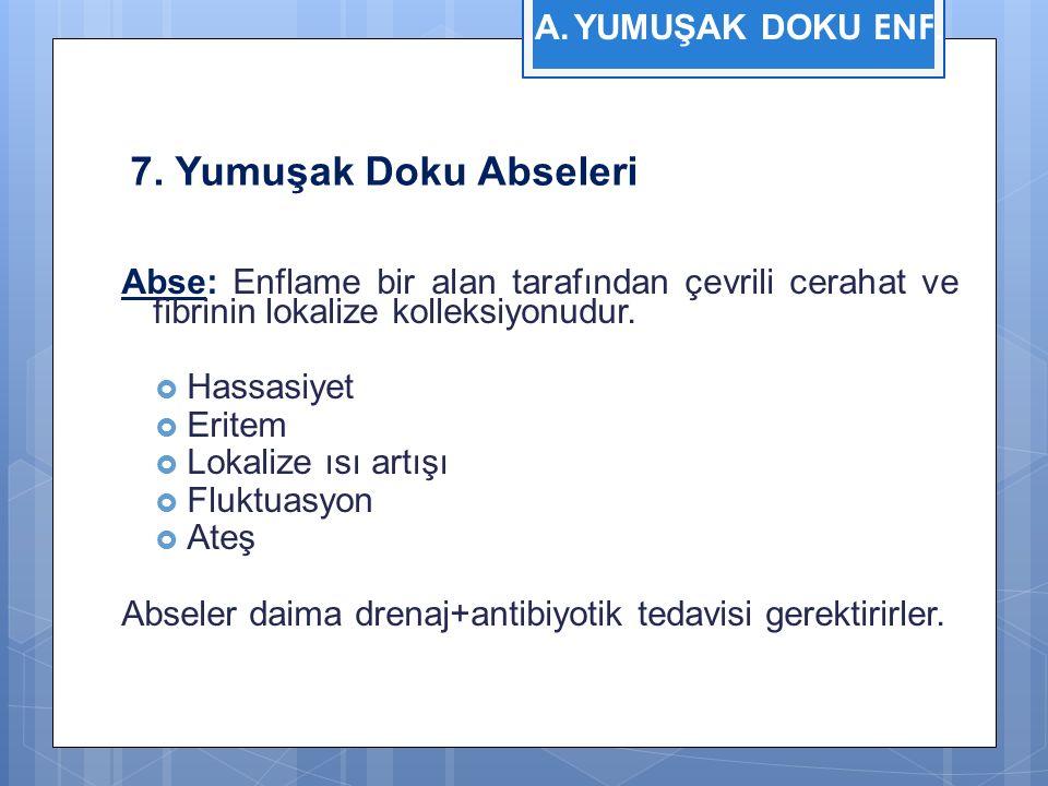 7. Yumuşak Doku Abseleri YUMUŞAK DOKU ENF.