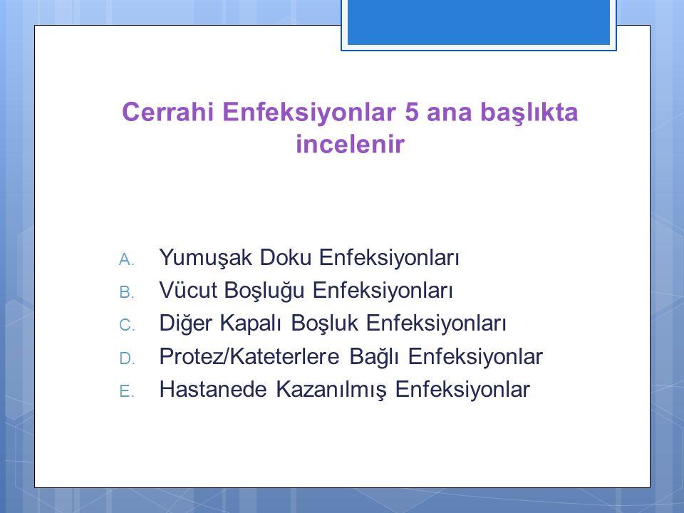 Cerrahi Enfeksiyonlar 5 ana başlıkta incelenir