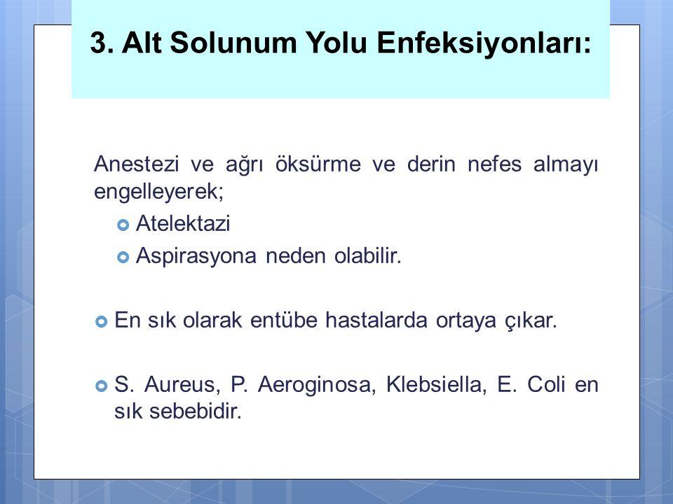 3. Alt Solunum Yolu Enfeksiyonları: