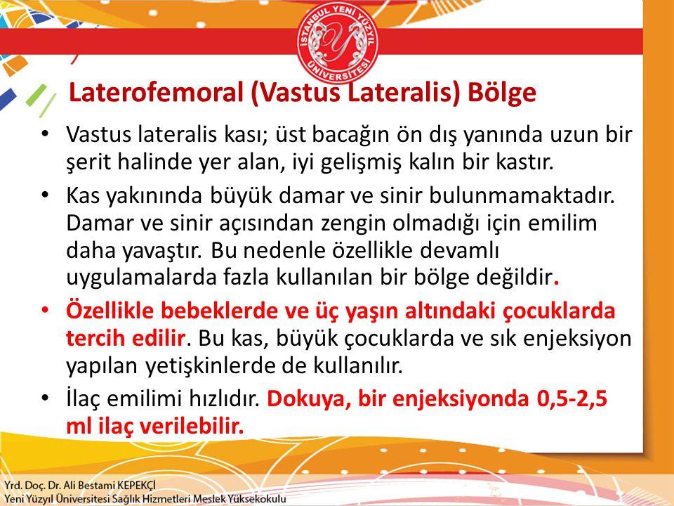 Laterofemoral (Vastus Lateralis) Bölge