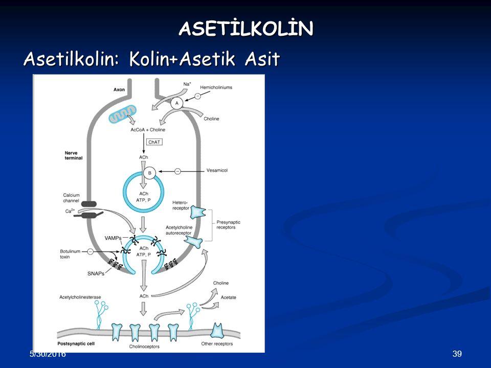 Asetilkolin: Kolin+Asetik Asit