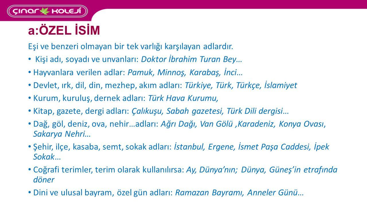 a:ÖZEL İSİM Eşi ve benzeri olmayan bir tek varlığı karşılayan adlardır. Kişi adı, soyadı ve unvanları: Doktor İbrahim Turan Bey…