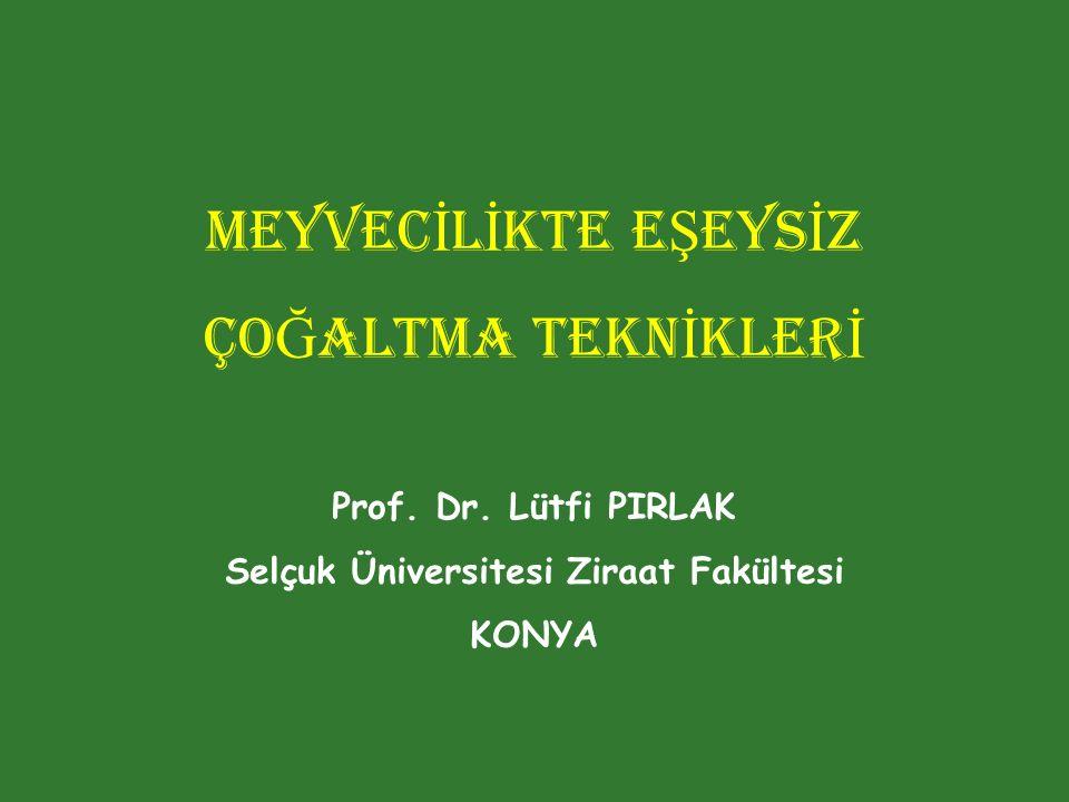 Selçuk Üniversitesi Ziraat Fakültesi