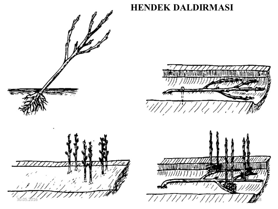 HENDEK DALDIRMASI 27.04.2017