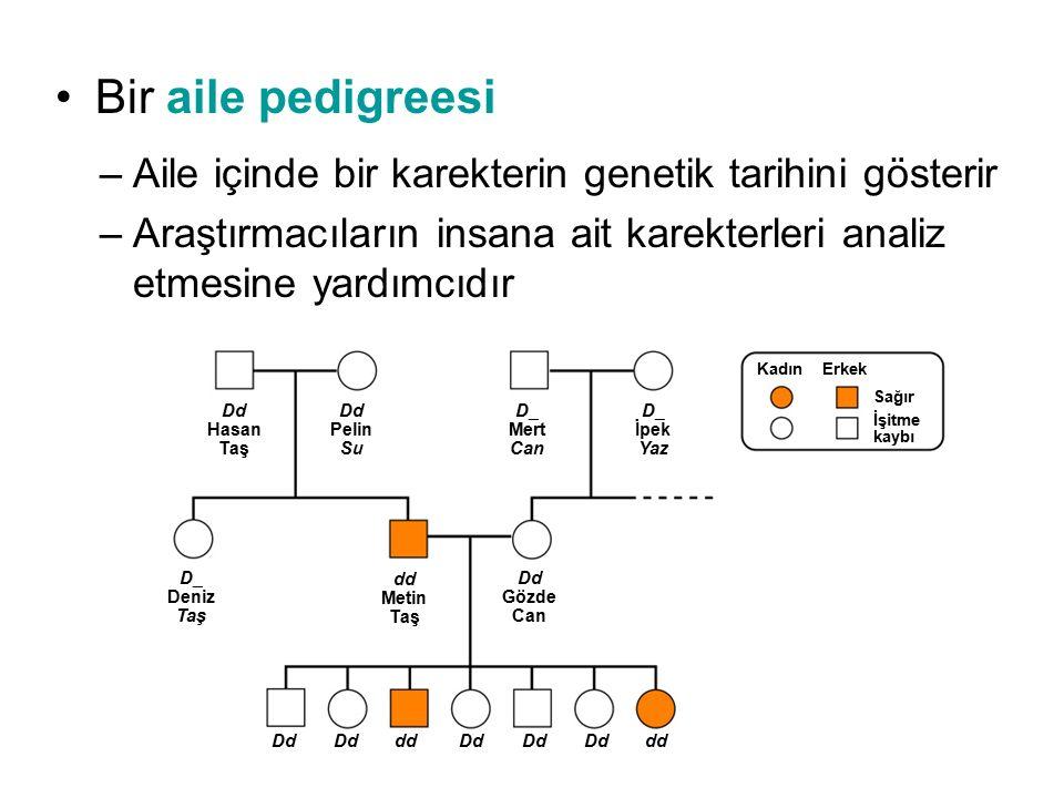Bir aile pedigreesi Aile içinde bir karekterin genetik tarihini gösterir. Araştırmacıların insana ait karekterleri analiz etmesine yardımcıdır.