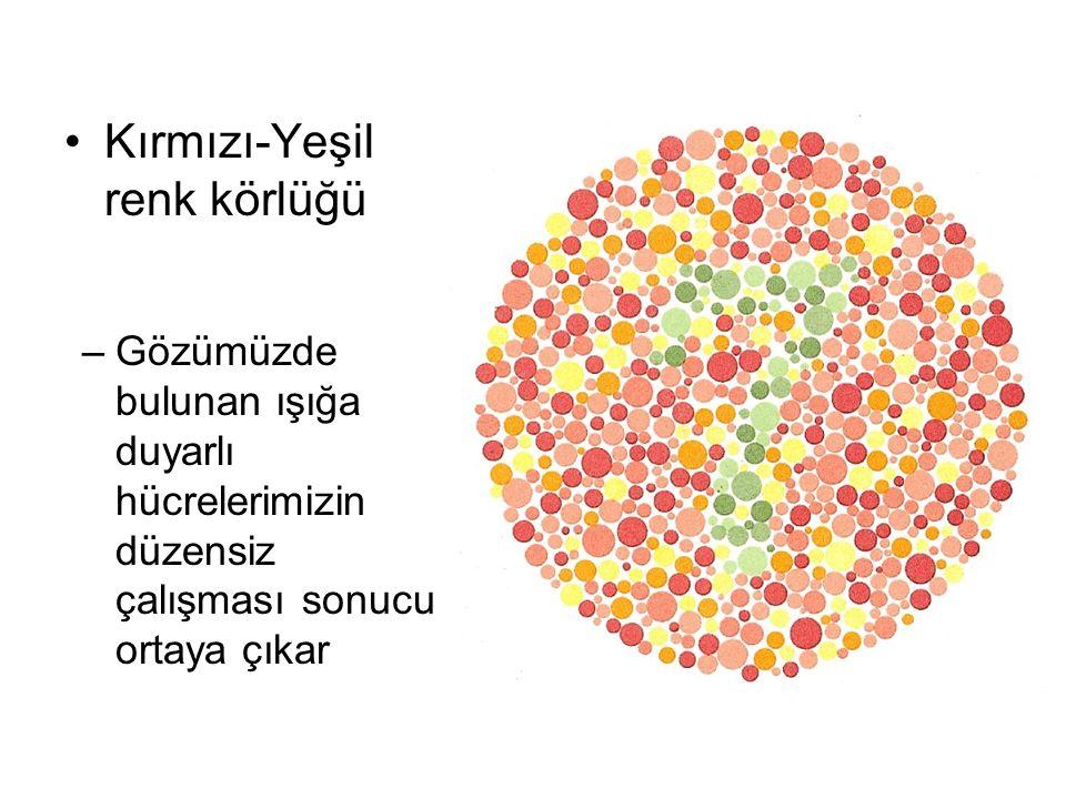 Kırmızı-Yeşil renk körlüğü