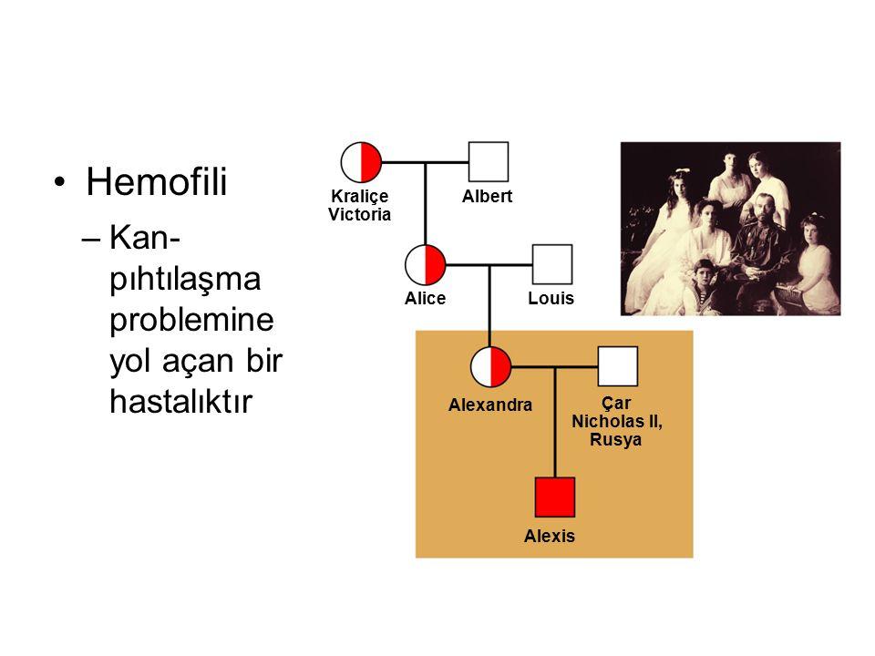 Hemofili Kan-pıhtılaşma problemine yol açan bir hastalıktır Kraliçe