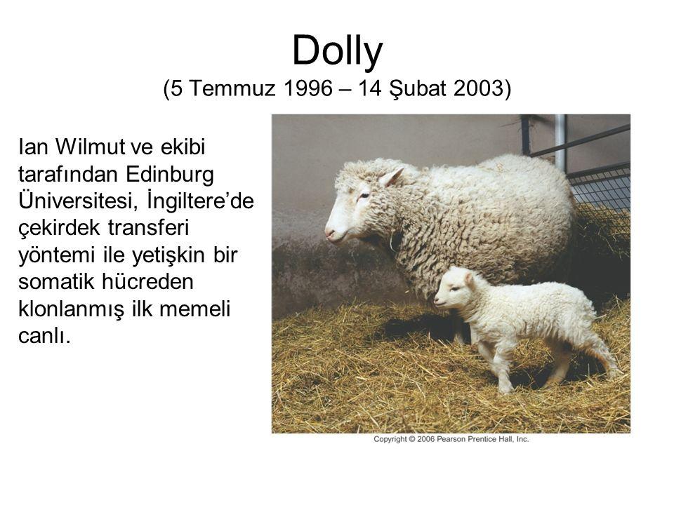 Dolly (5 Temmuz 1996 – 14 Şubat 2003)