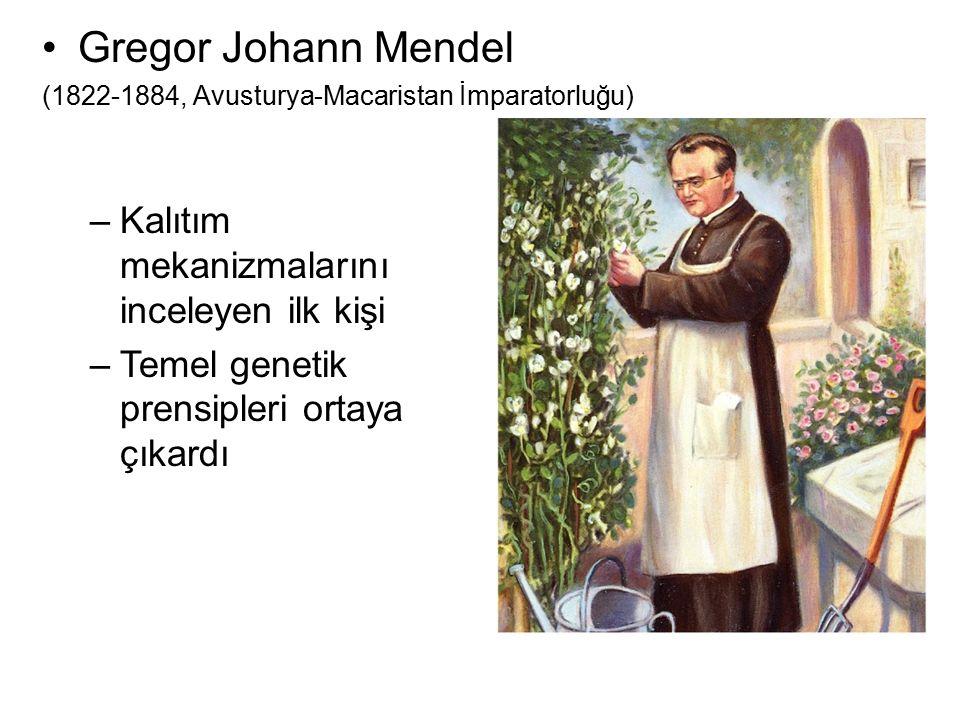 Gregor Johann Mendel Kalıtım mekanizmalarını inceleyen ilk kişi