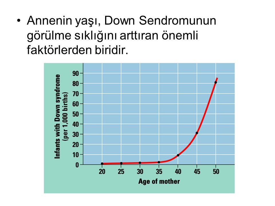 Annenin yaşı, Down Sendromunun görülme sıklığını arttıran önemli faktörlerden biridir.