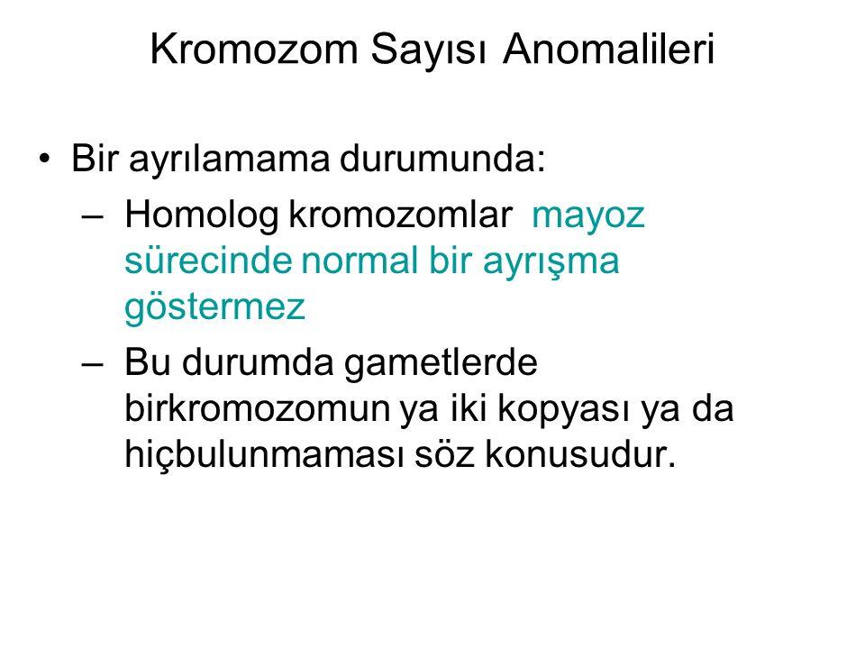 Kromozom Sayısı Anomalileri