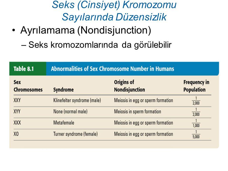 Seks (Cinsiyet) Kromozomu Sayılarında Düzensizlik