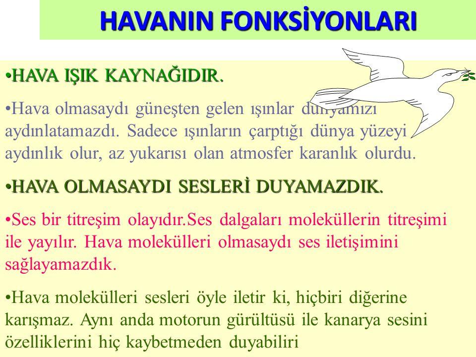 HAVANIN FONKSİYONLARI