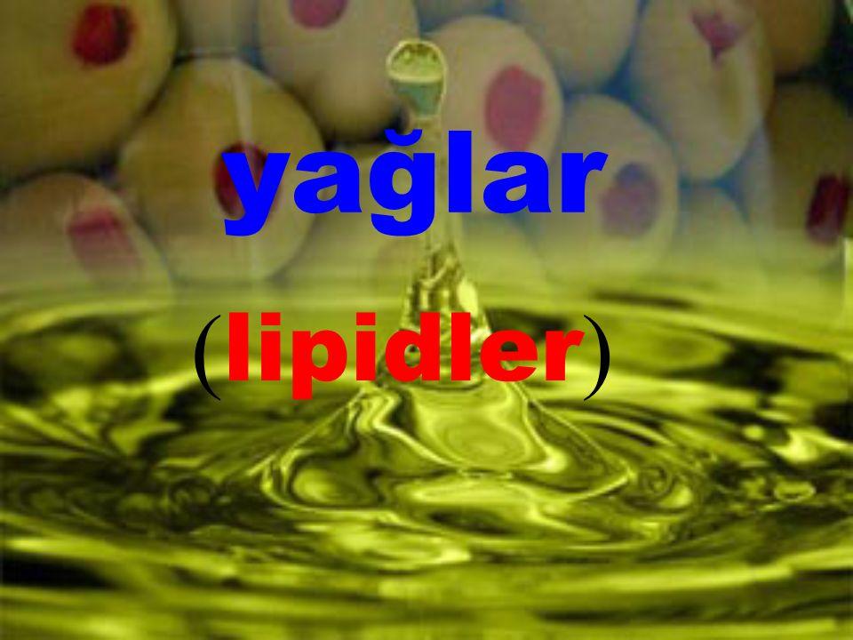 yağlar (lipidler)