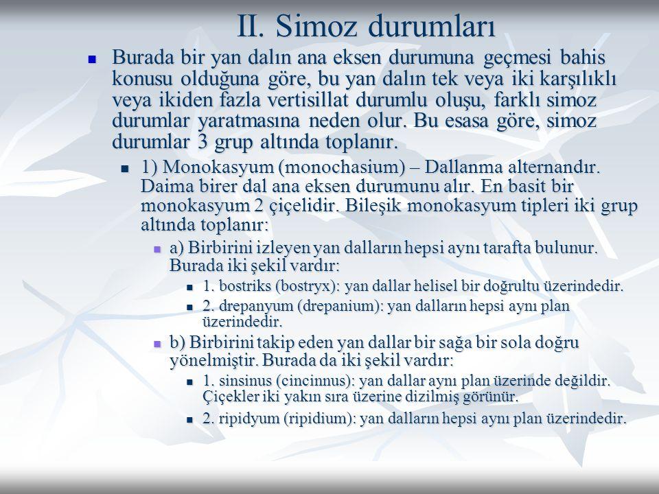 II. Simoz durumları