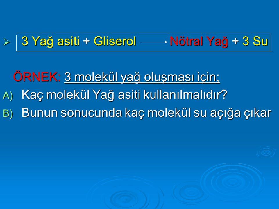 3 Yağ asiti + Gliserol Nötral Yağ + 3 Su