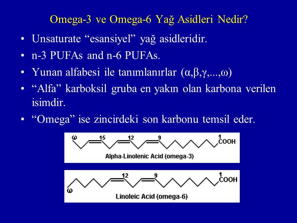 Omega-3 ve Omega-6 Yağ Asidleri Nedir