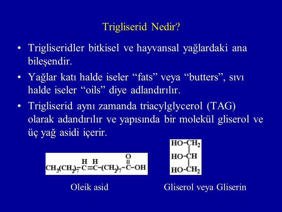 Trigliseridler bitkisel ve hayvansal yağlardaki ana bileşendir.