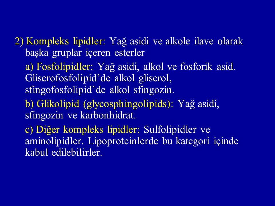 2) Kompleks lipidler: Yağ asidi ve alkole ilave olarak başka gruplar içeren esterler