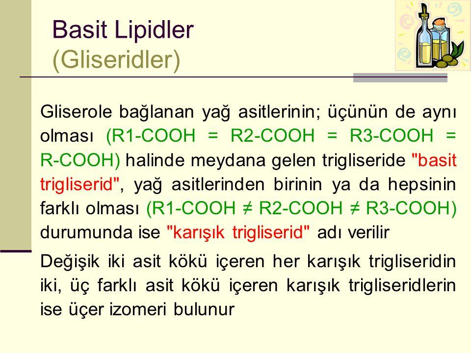 Basit Lipidler (Gliseridler)