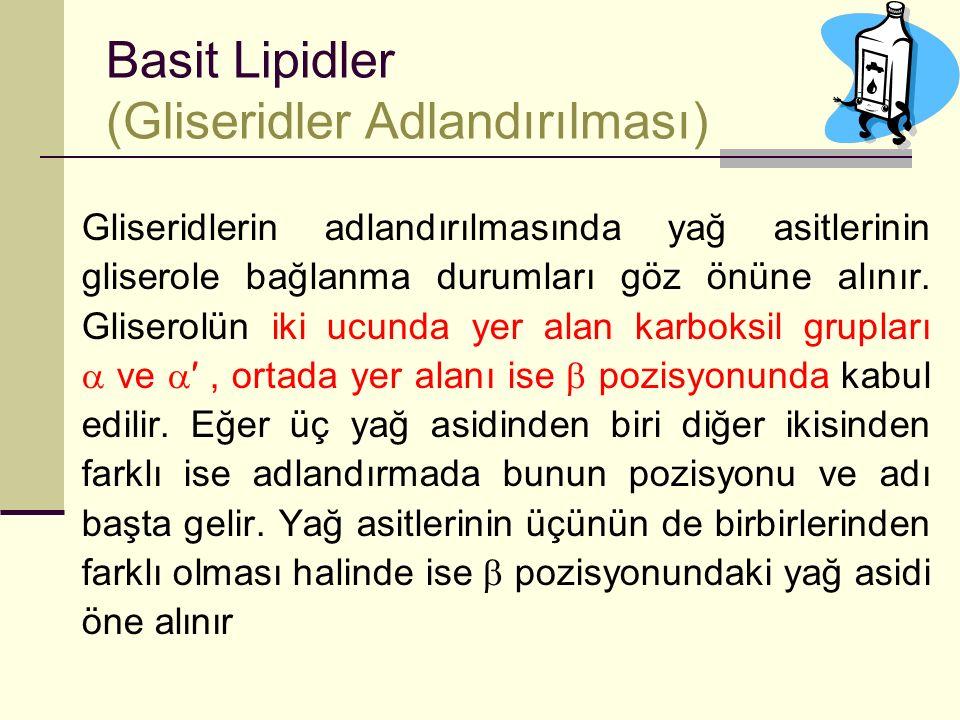 Basit Lipidler (Gliseridler Adlandırılması)