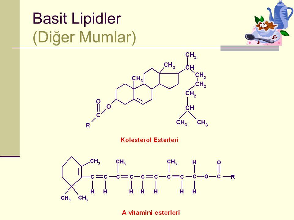 Basit Lipidler (Diğer Mumlar)
