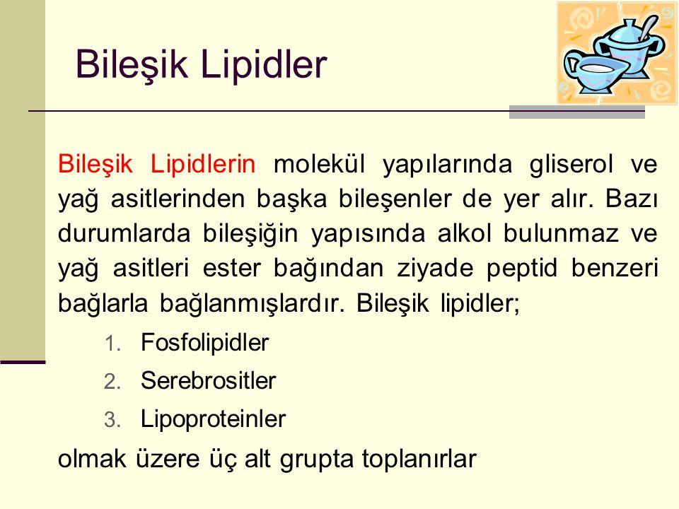 Bileşik Lipidler