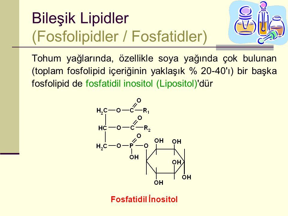 Bileşik Lipidler (Fosfolipidler / Fosfatidler)