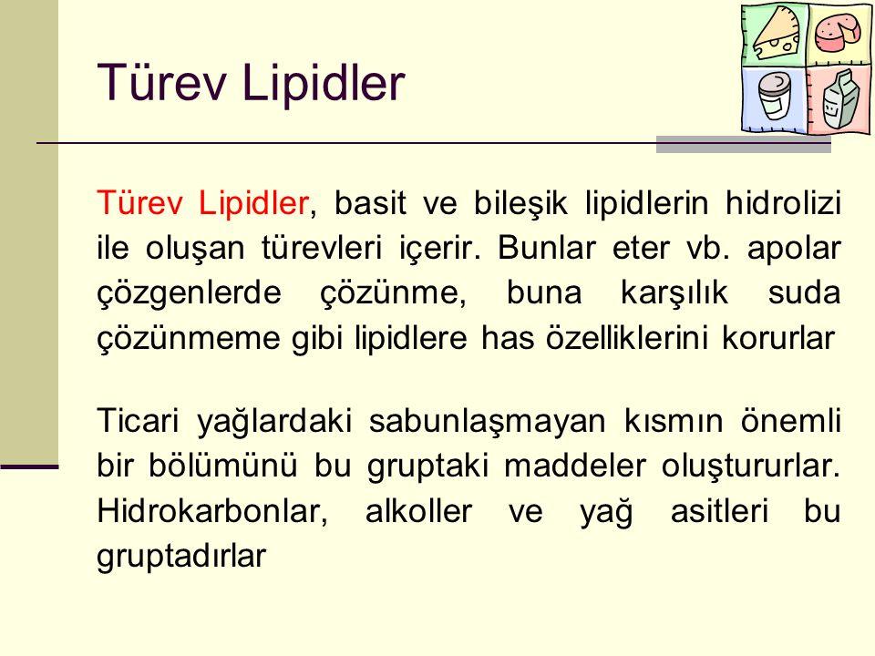 Türev Lipidler
