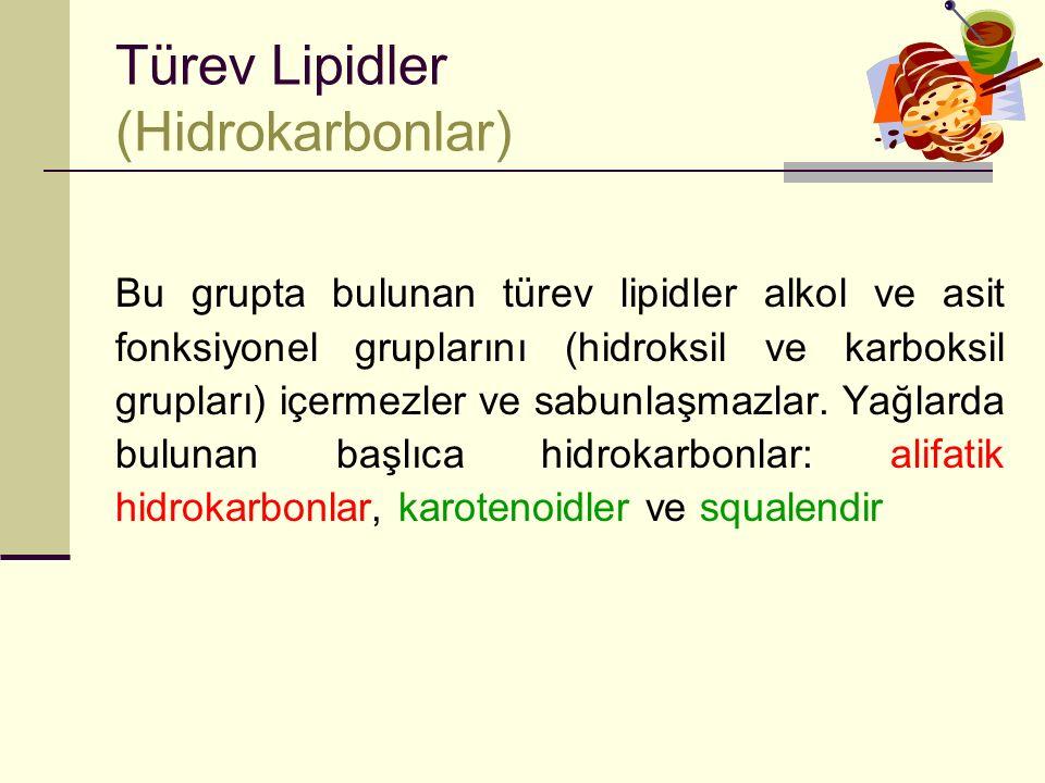 Türev Lipidler (Hidrokarbonlar)