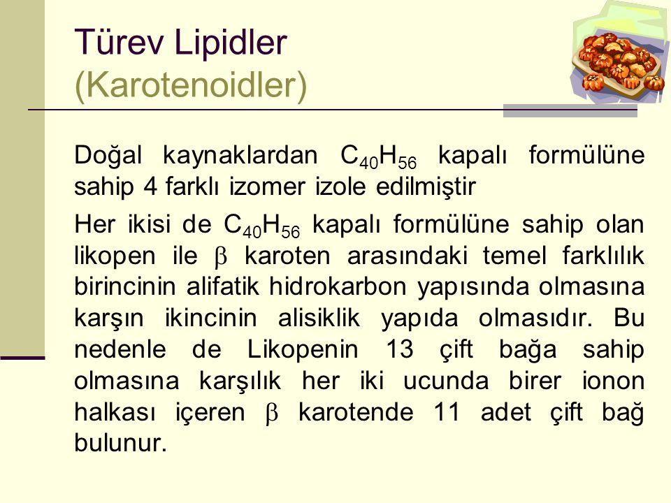 Türev Lipidler (Karotenoidler)