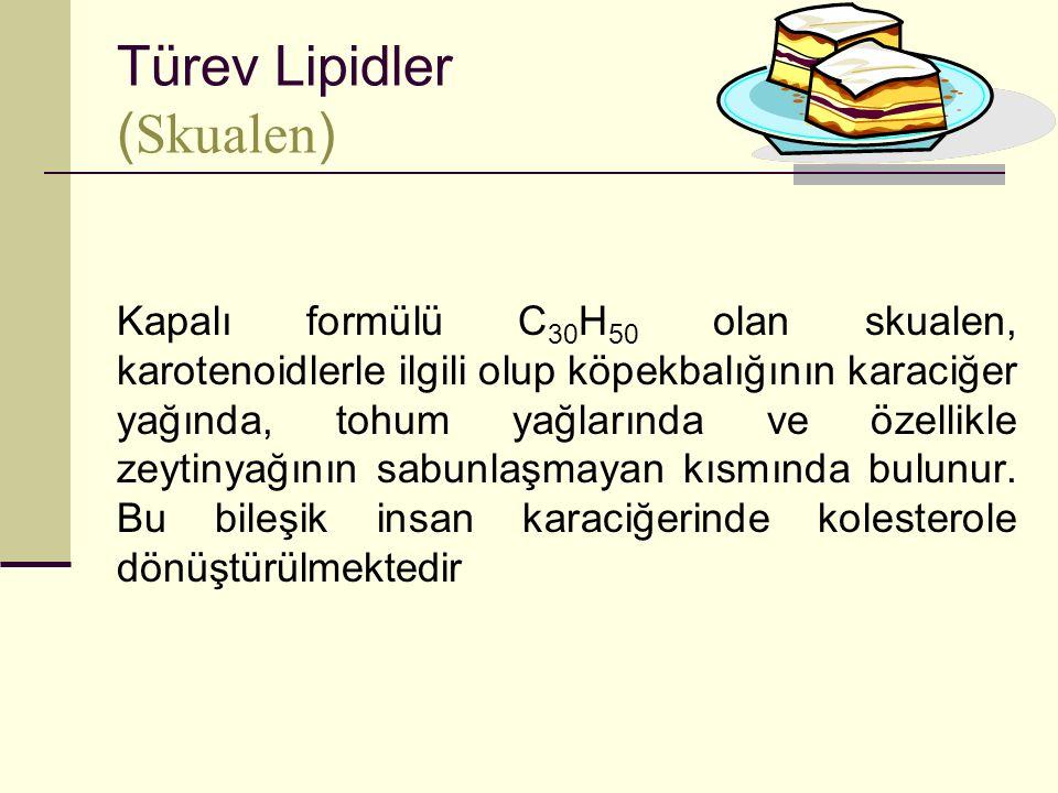 Türev Lipidler (Skualen)