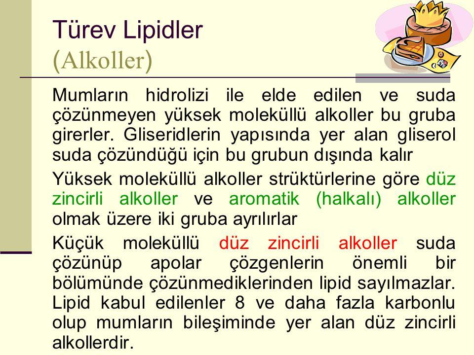 Türev Lipidler (Alkoller)