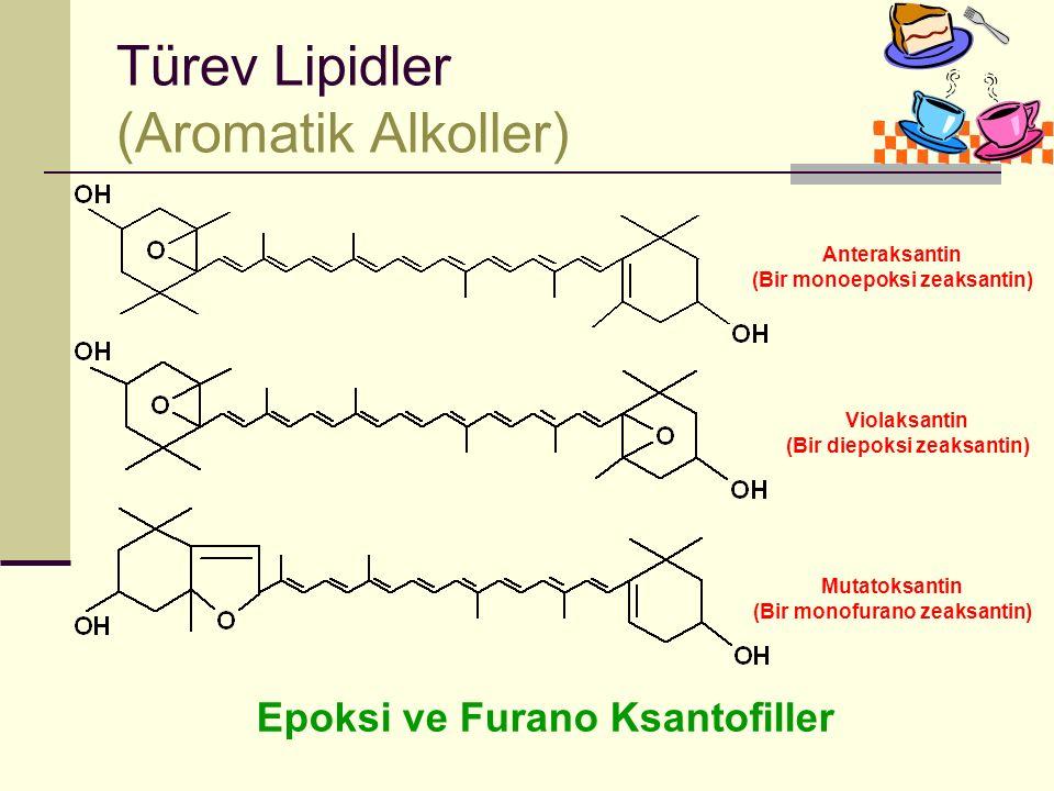 Türev Lipidler (Aromatik Alkoller)
