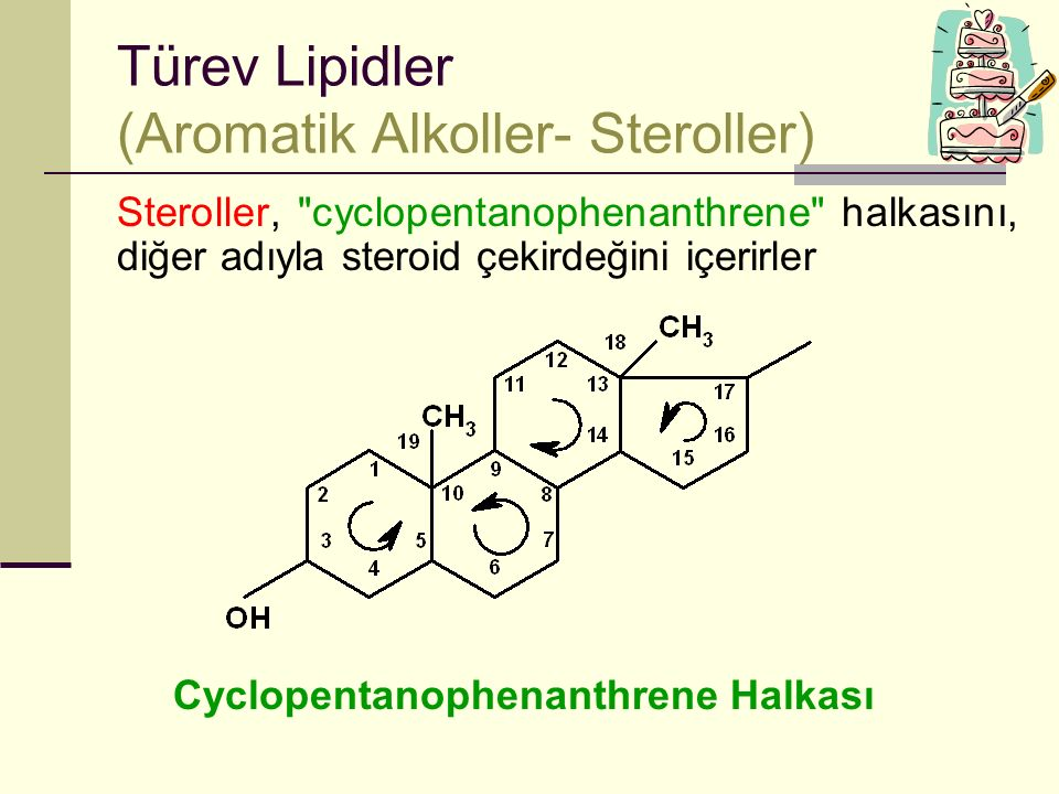 Türev Lipidler (Aromatik Alkoller- Steroller)