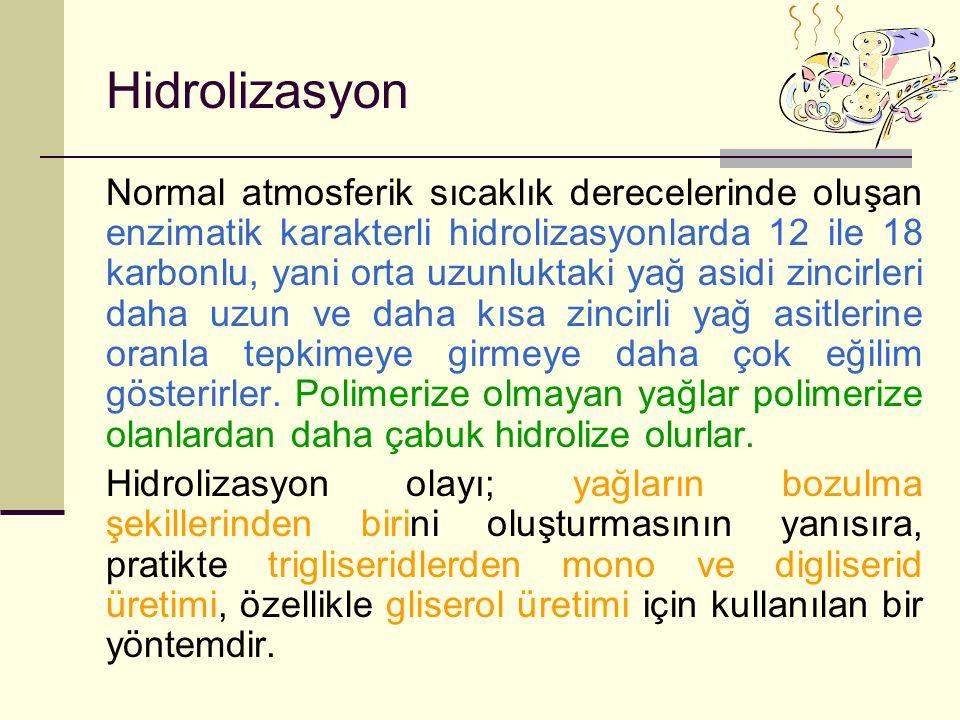 Hidrolizasyon