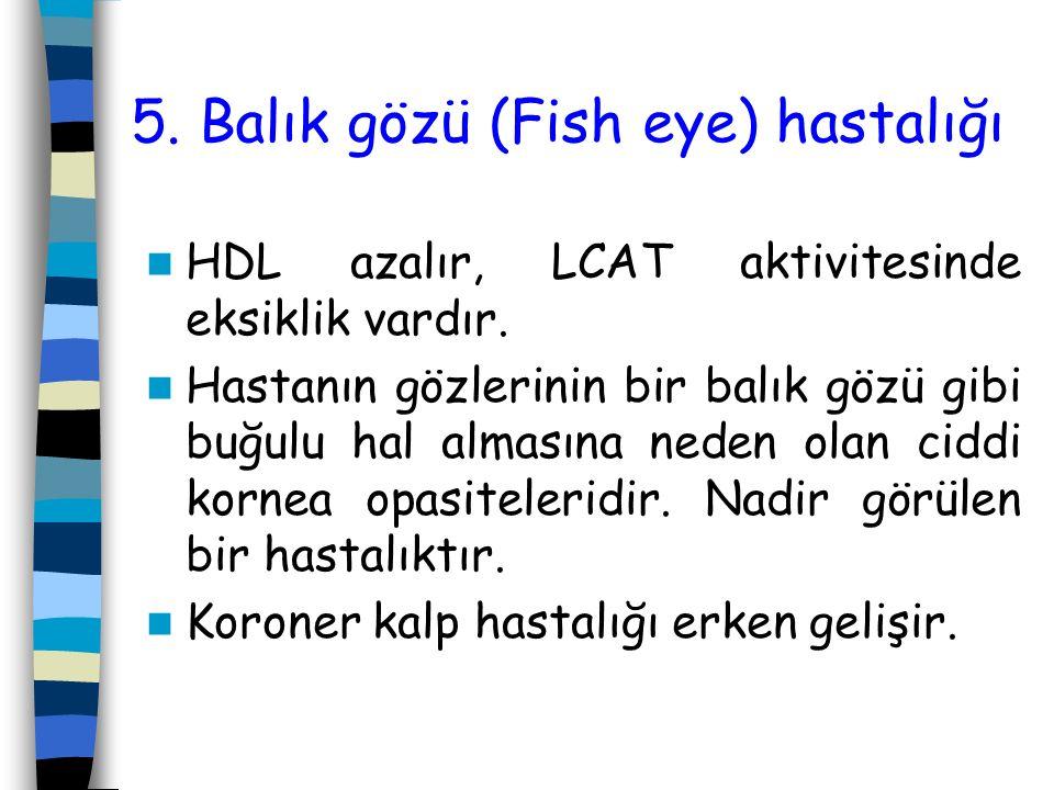 5. Balık gözü (Fish eye) hastalığı