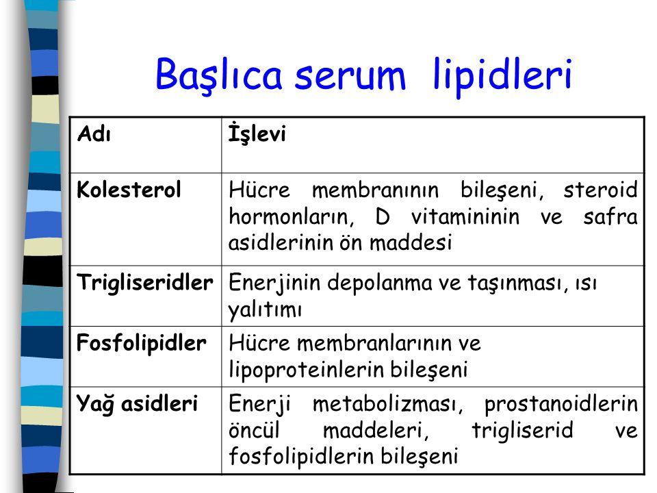 Başlıca serum lipidleri