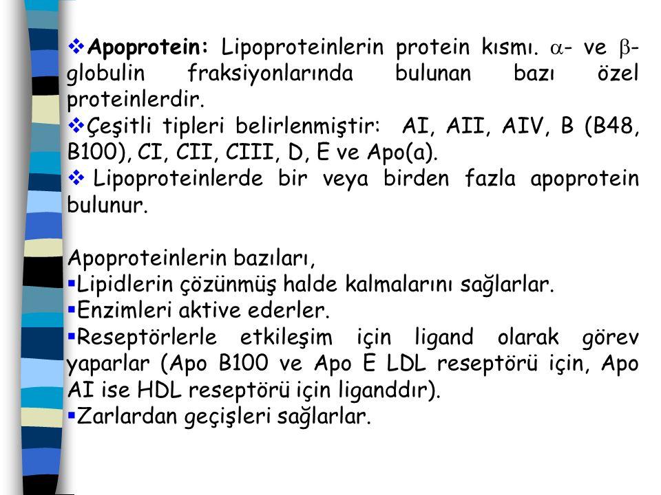Apoprotein: Lipoproteinlerin protein kısmı