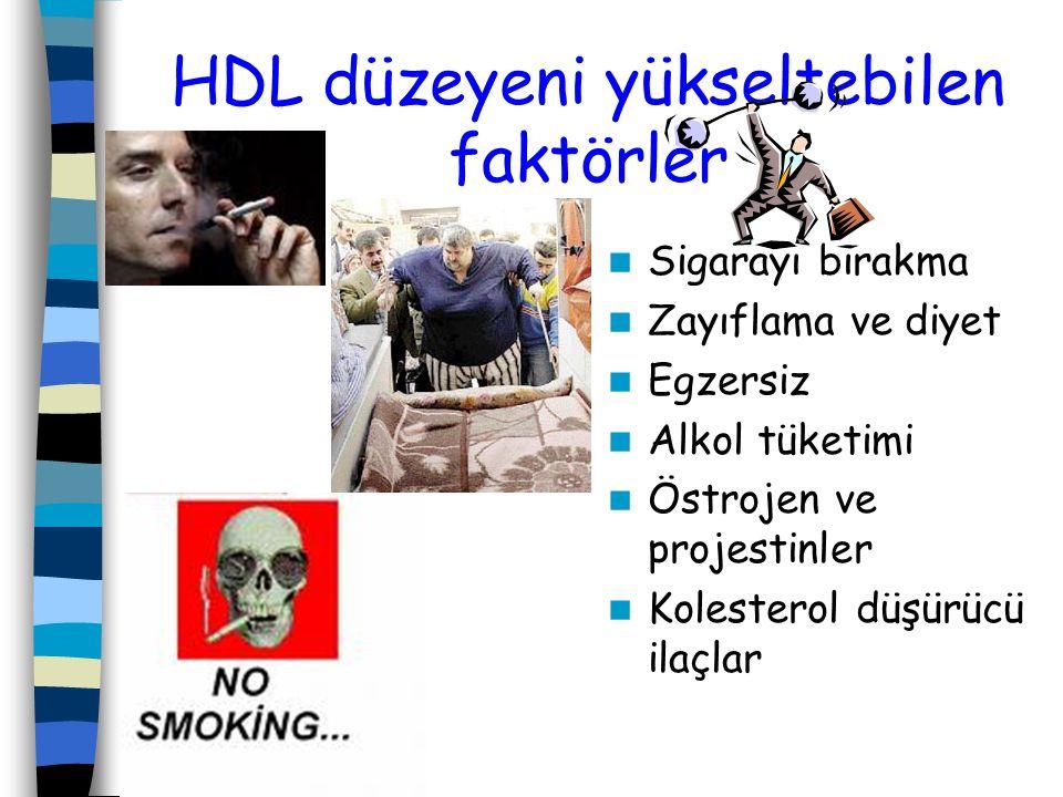 HDL düzeyeni yükseltebilen faktörler