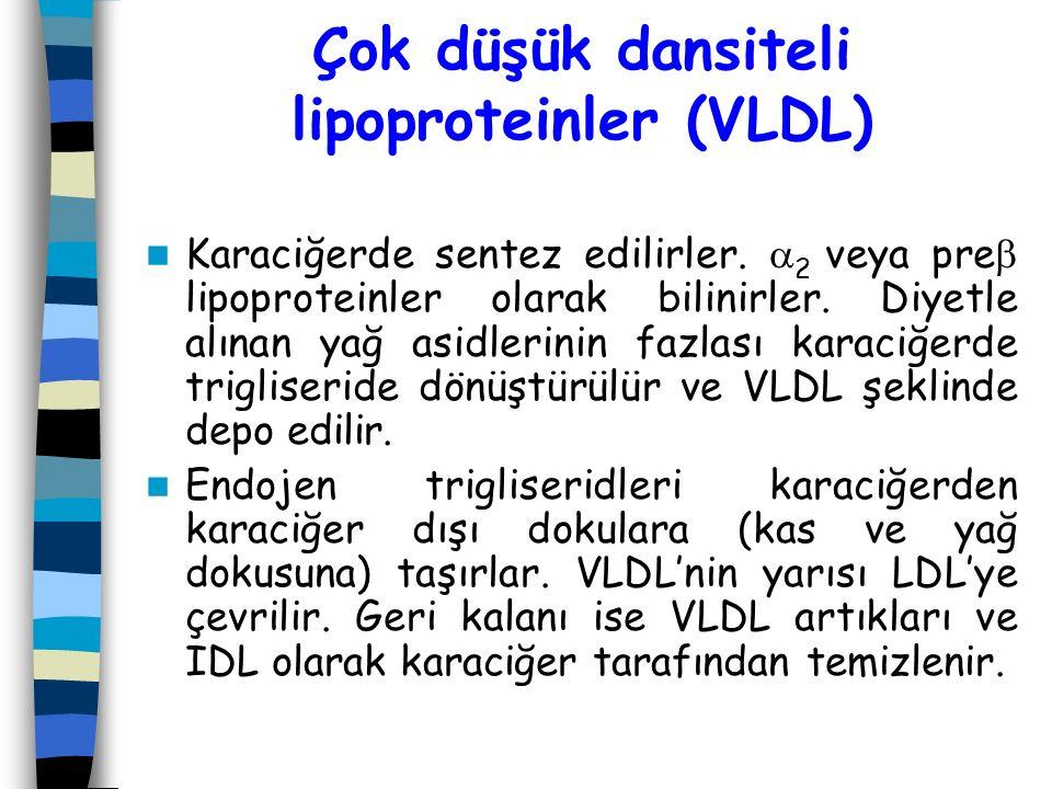 Çok düşük dansiteli lipoproteinler (VLDL)